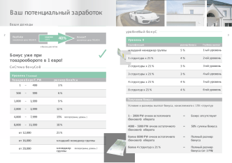 Marketingplan green rus