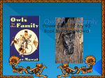 Owls in the family by Izzy