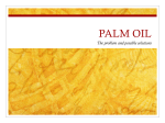 Palm Oil Action Group