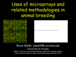 Potential use of microarrays and related methodologies in animal