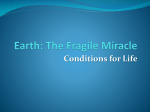 The 4 Conditions for Life on Earth