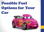 Fuel options for your Car