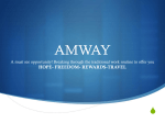 amway income plan