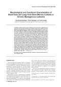 Morphological and functional characteristics of short-term and long-term bone marrow cultures in chronic myelogenous leukemia