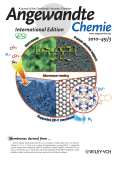 Inside Cover  Molecular Sieve Membrane  Supported MetalЦOrganic Framework with High Hydrogen Selectivity (Angew. Chem. Int. Ed. 32010)