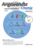 Inside Cover  Templated Synthesis of Highly Stable  Electroactive  and Dynamic MetalЦDNA Branched Junctions (Angew. Chem. Int. Ed