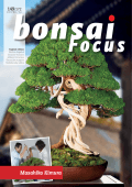 Bonsai Focus (English Edition) - November December 2017