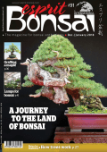 Esprit Bonsai International - December 01, 2017