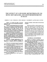 The Effect of Low-Dose Methotrexate on Bone Metabolism and Histomorphometry in Rats.