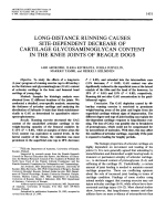 Long-distance running causes site-dependent decrease of cartilage glycosaminoglycan content in the knee joints of beagle dogs.