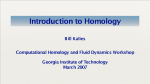 Introduction to Homology kalies