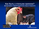 What To Do About Avian Flu?