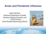 Avian and Pandemic Influenza - Minnesota Department of Health