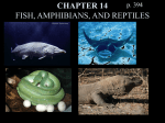 CHAPTER 15 FISH, AMPHIBIANS, AND REPTILES