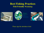 Best Fishing Practices Fish Friendly Workshop