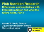 Fish Nutrition Research Differences and similarities with livestock