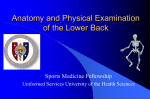 Functional Anatomy - Uniformed Services University of the Health