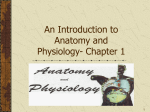 An Introduction to Anatomy and Physiology- Chapter 1