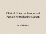 Clinical notes on anatomy of female reproductive system
