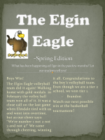 The Elgin Eagle