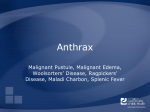 Anthrax PowerPoint - The Center for Food Security and Public Health