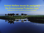 Animal Welfare Issues as Pertains to the Environmental Protection
