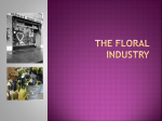 Floral Industry PowerPoint