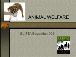 ANIMAL WELFARE - ELISTA Education