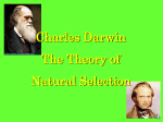 Darwin and Natural Selection PowerPoint