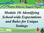 Identifying School-wide Expectations and Rules for Unique Settings