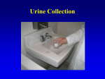 Urine collection presentation