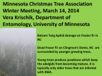 Minnesota Christmas Tree Association Winter Meeting, March