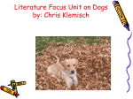 Literature Focus Unit on Dogs