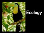 Ecology Unit - Biology Junction