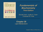 Fundamentals of Biochemistry 3/e