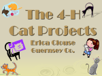 The 4-H Small Animals Cat Projects - Ohio 4