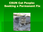 CSUN Cat People: