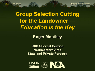 Group Selection Cutting in n. Maine