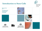 Introduction to Stem Cell PowerPoint Presentation