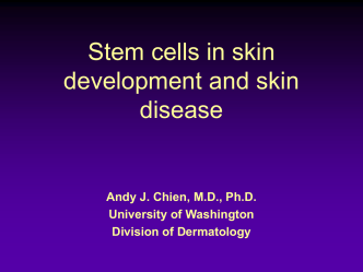 Stem cells and gene therapy in dermatology