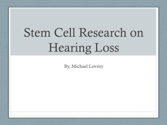 Stem Cell Research on Hearing Loss