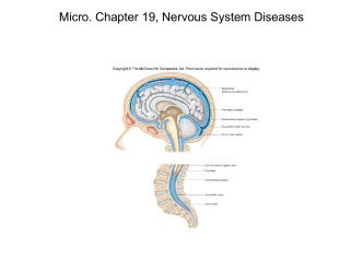 Micro. Chapter 19, Nervous System Diseases