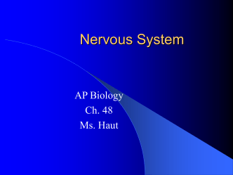 ch. 48 Nervous System notes