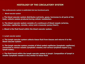 HISTOLOGY OF THE CIRCULATORY SYSTEM