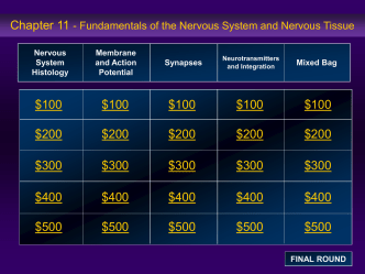 Nervous System Histology Membrane and Action Potential