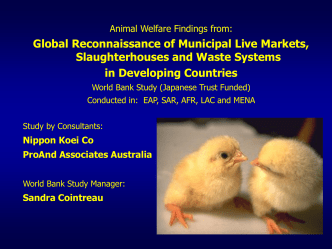 Slide Presentation on Animal Welfare in Livestock Markets and Meat