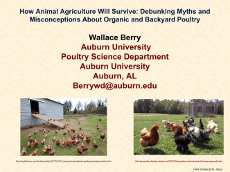 How Animal Agriculture Will Survive: Debunking Myths and