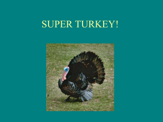 SUPER TURKEY! - Bulletin Boards for the Music Classroom