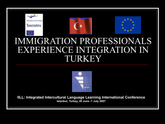 immigration professionals experience integration in turkey