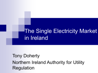 The Capacity Payment Mechanism in the Single Electricity